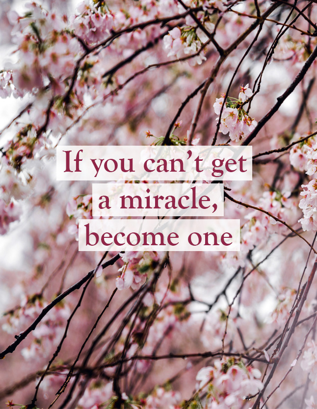If-you-cannot-get-miracle